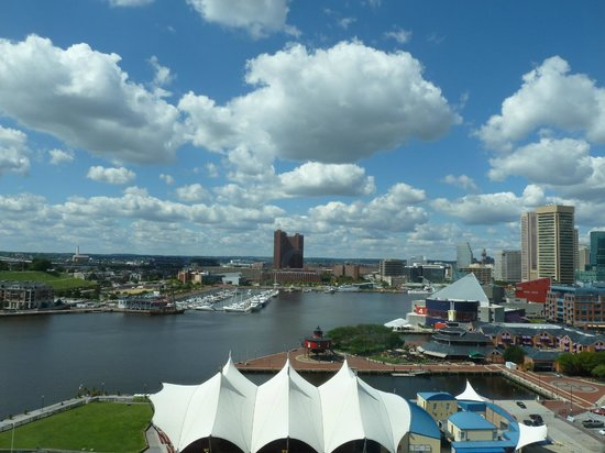 Baltimore Marriott Waterfront: View from the Room