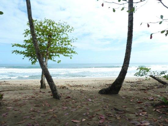 Cabinas Yamann: Manzanillo Strand