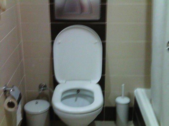 Nova Park Hotel: Toilet