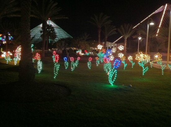 Moody Gardens: Flower Garden in the Festival of Lights