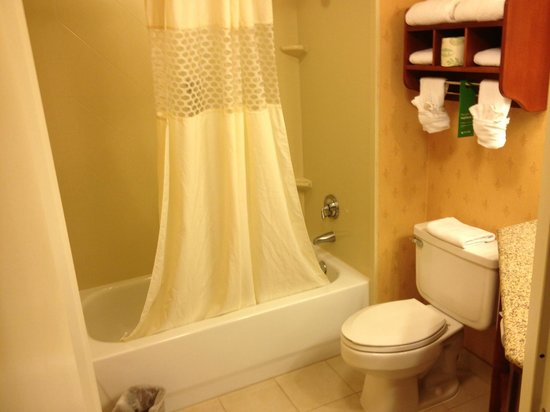 Hampton Inn Los Angeles/Santa Clarita: Shower