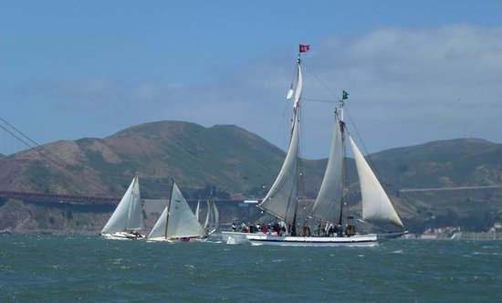 Capt Dan Classic Sails