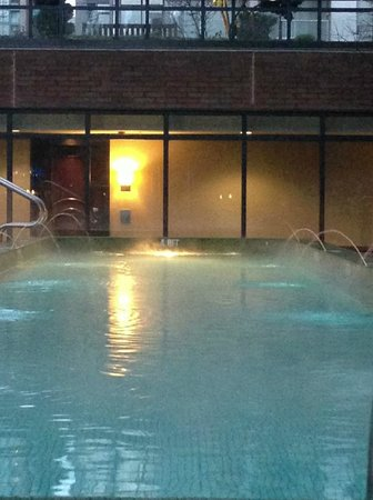 L'Hermitage Hotel: Heated Salt Water Pool