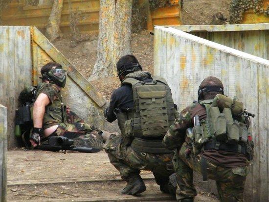 Ambush Activities