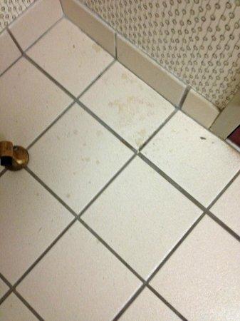 Bally's Atlantic City : Filthy, grimy bathroom floor