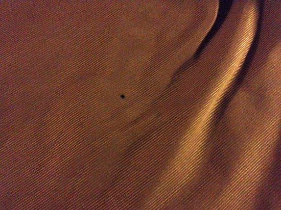 Bally's Atlantic City : Burn holes on the blankets