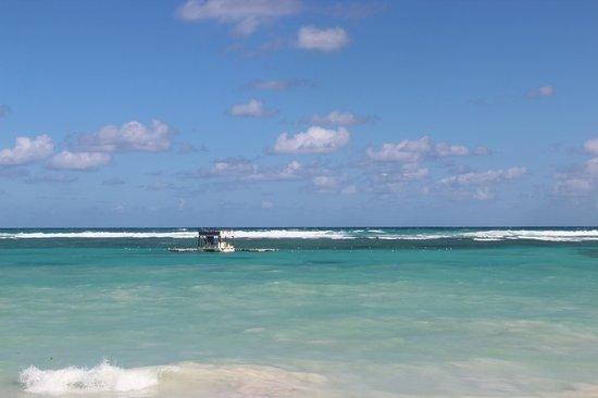 Ocean Blue & Sand: ocean