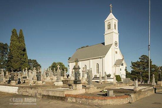 Saint Sava Serbian Orthodox Church: St. Sava Serbian Orthodox Church, Jackson, 1st in North America
