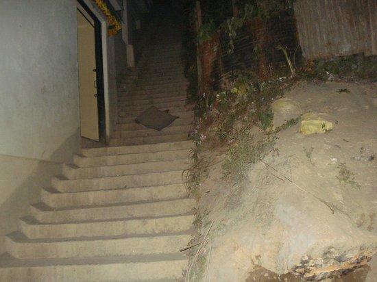 Hotel Dolma 21:                   Entrance