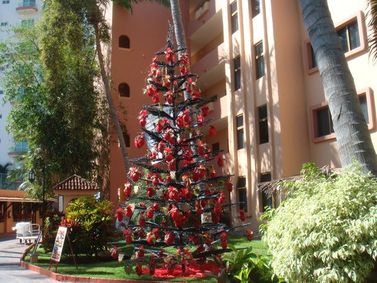 Torres Mazatlan Resort : Christmas tree on grounds