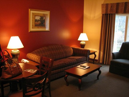 Resort at Governor's Crossing: Living room with queen pull-out sofa.