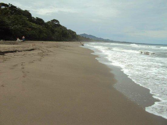 Magic Moon Beach House: Playa Negra
