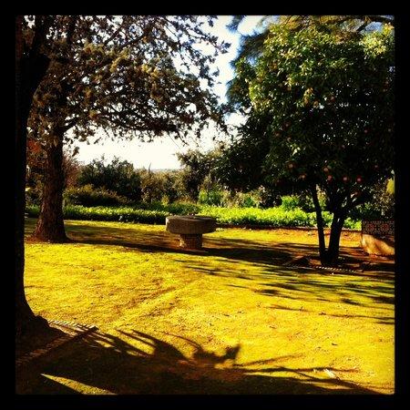 Hacienda La Vereda: View from our ground floor room