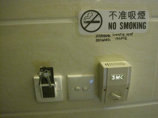 Maple Leaf Guest House: switches