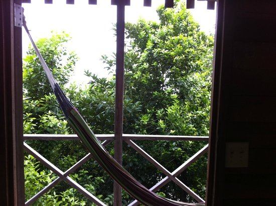 Jungle Bay, Dominica: looking out from the room