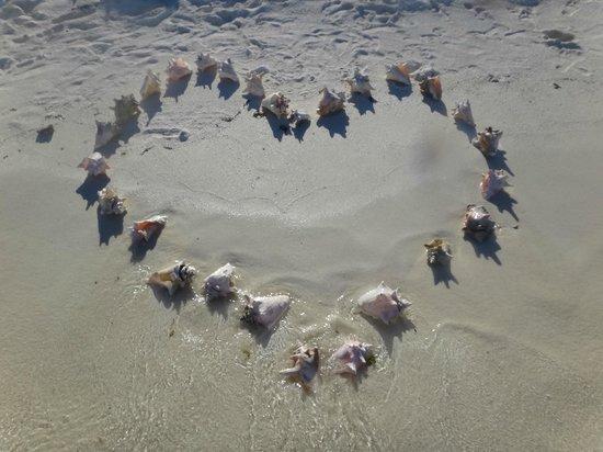 Posada El Canto de la Ballena: un regalo en la playa para 15 años de amor