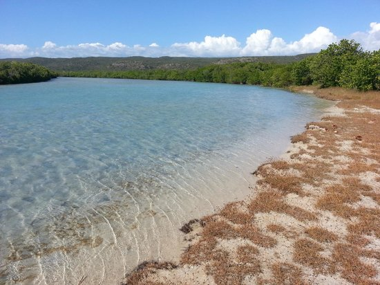 "Guanica, Puerto Rico: The ""secret"" beach at Punta Ballena"