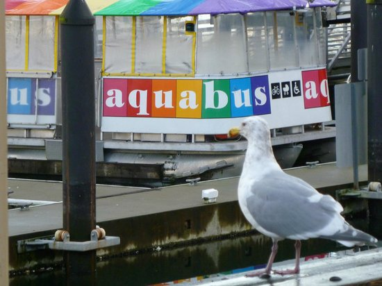 The Aquabus : Aquabus Ferry @ Granville Island