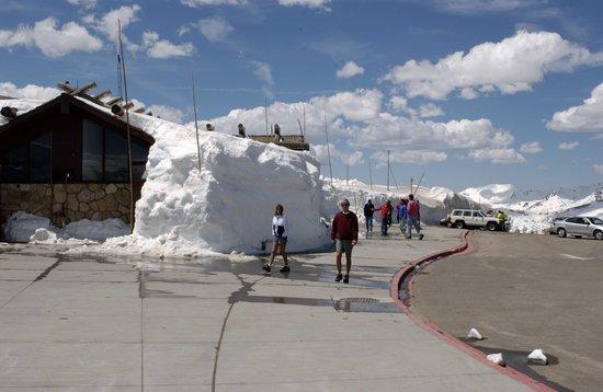 Wildwood Inn: Alpine Visitor Center on Trail Ridge Road
