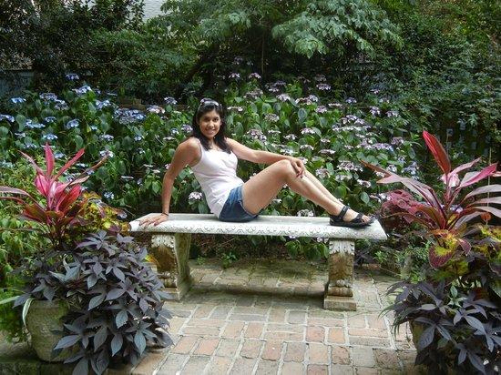 Elizabethan Gardens: Pic 5
