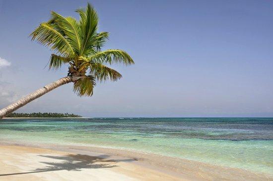 Xeliter Balcones del Atlantico: Beach