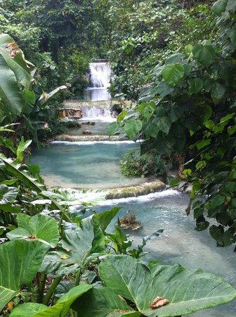 พอร์ตวิลา, วานูอาตู: Great pics to be had