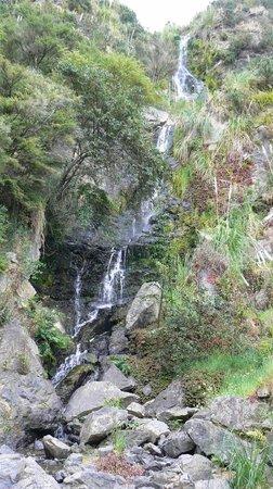 Whangarei Quarry Gardens: Quarry Waterfall