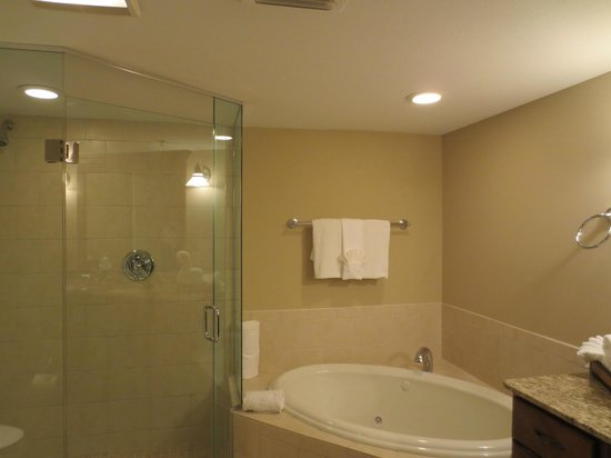 ‪ذا رزيدنسز آت بيلتمور: Glassed-in shower and tub in one of the two bathrooms, suite 404‬
