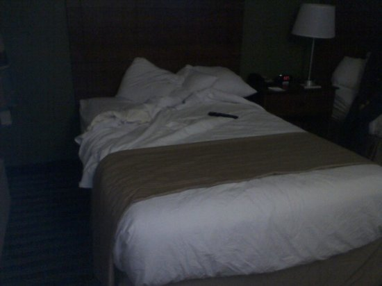 Quality Inn Flamingo: bed