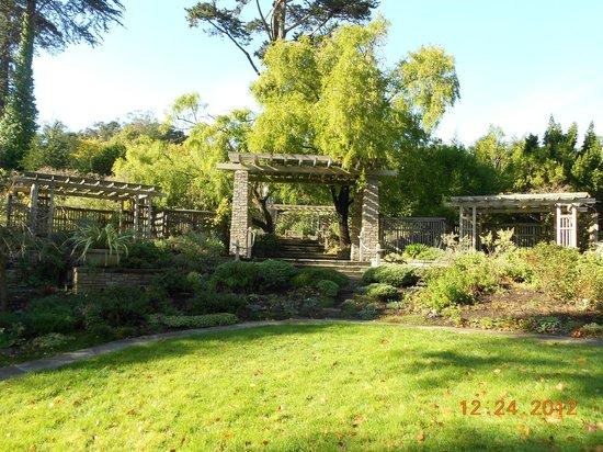 San Francisco Botanical Garden Picture Of San Francisco Botanical Garden San Francisco
