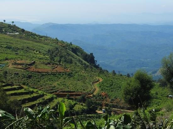 Hill Safari Eco Lodge Ohiya: view from outside