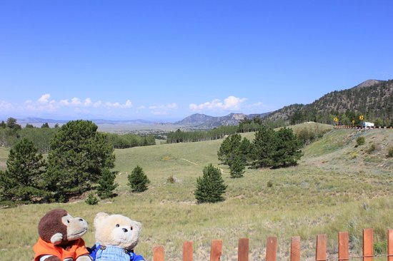Collegiate Peaks Scenic Overlook: Chipo and a great landscape 2