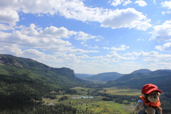 Collegiate Peaks Scenic Overlook : Chipo and a great landscape
