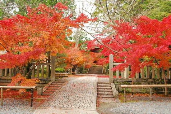 Komyoji Temple: 光明寺