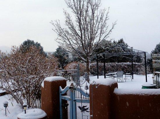 Ravens Ridge: Christmas morning veiw of garden area!