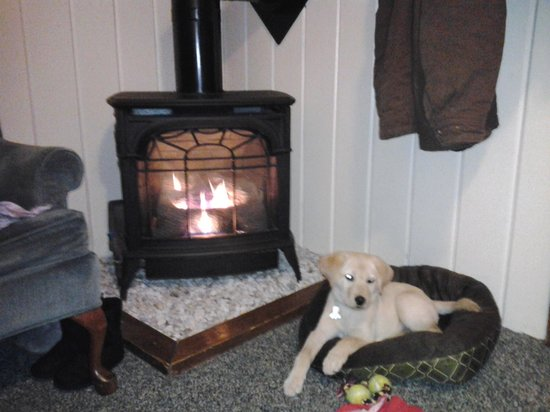 Old Red Inn & Cottages: snuggling by the fire