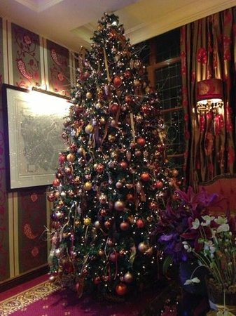 Hotel Estherea: Christmas tree in the lounge
