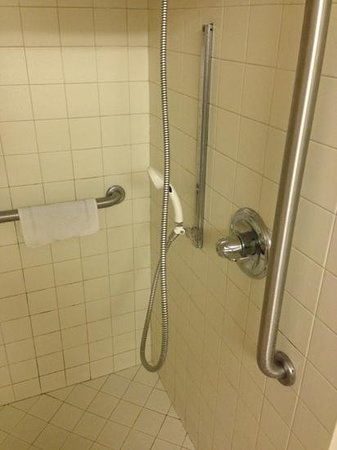 ‪‪Days Inn Priceville - Decatur‬: shower handle broken