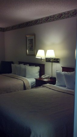 Quality Inn & Suites Biltmore South: 2 Queen Beds