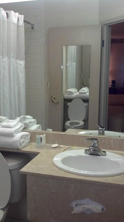 Quality Inn & Suites Biltmore South: Bathroom