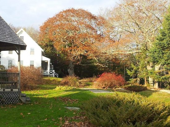 Autumn on the Harborfields grounds