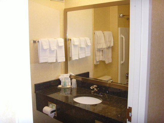 Comfort Inn Mechanicsburg/Harrisburg - South: squeeky clean