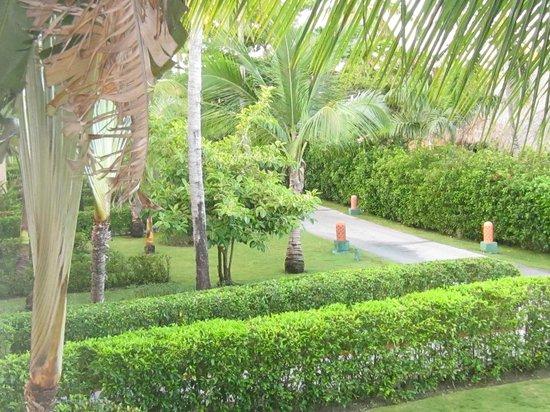 Majestic Colonial Punta Cana: Random photo