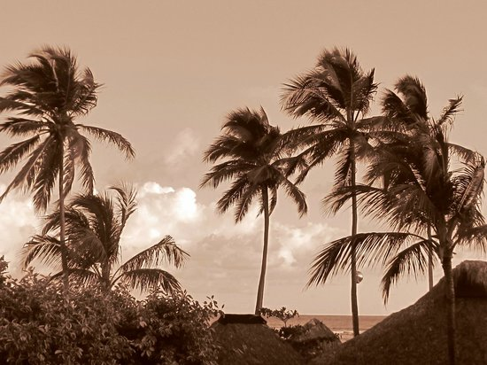 Majestic Colonial Punta Cana: View from my balcony