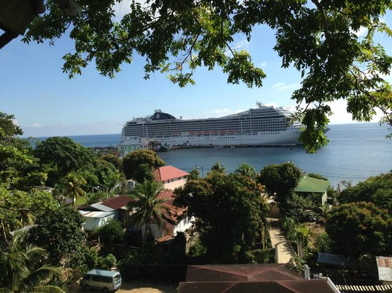 Jungle Top Zipline Adventure: Our Cruise ship from up in the jungle while Zipping