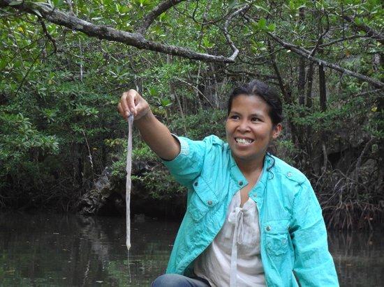 Puerto Princesa Underground River : Mangrove Paddle Boat Tour Guide