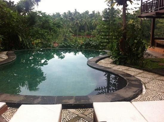 Graha Moding Villas: View from the pool overlooking the valley.
