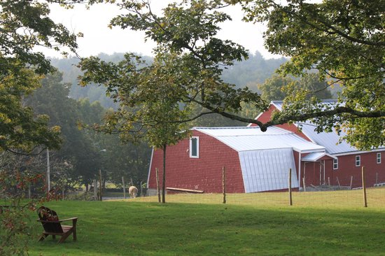 Maple Hill Farm Inn and Conference Center: View from the front porch