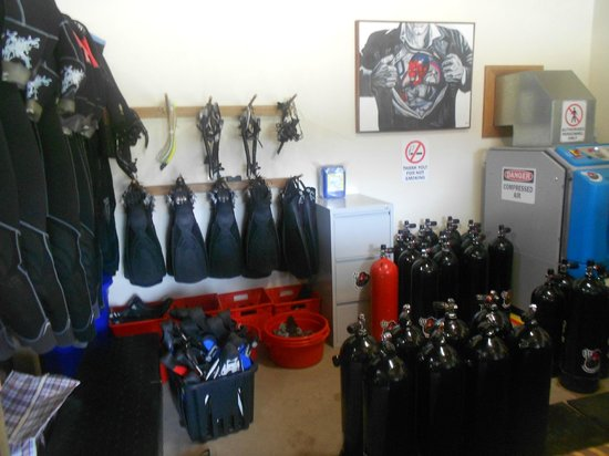 Devil's Point Dive: Unbeatable equipment - handled with care at all times
