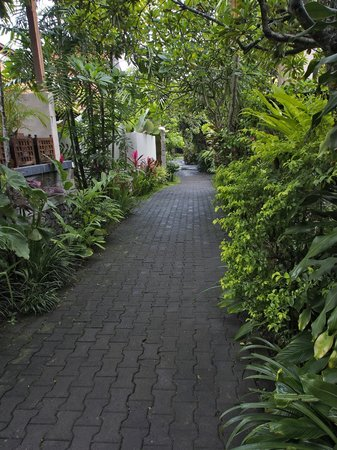 Taman Harum Cottages: Garden pathways